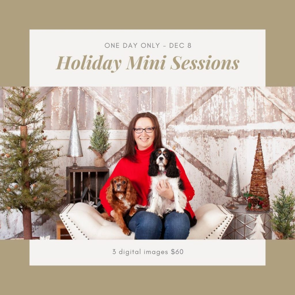 Holiday Mini sessions Dec 8 2019